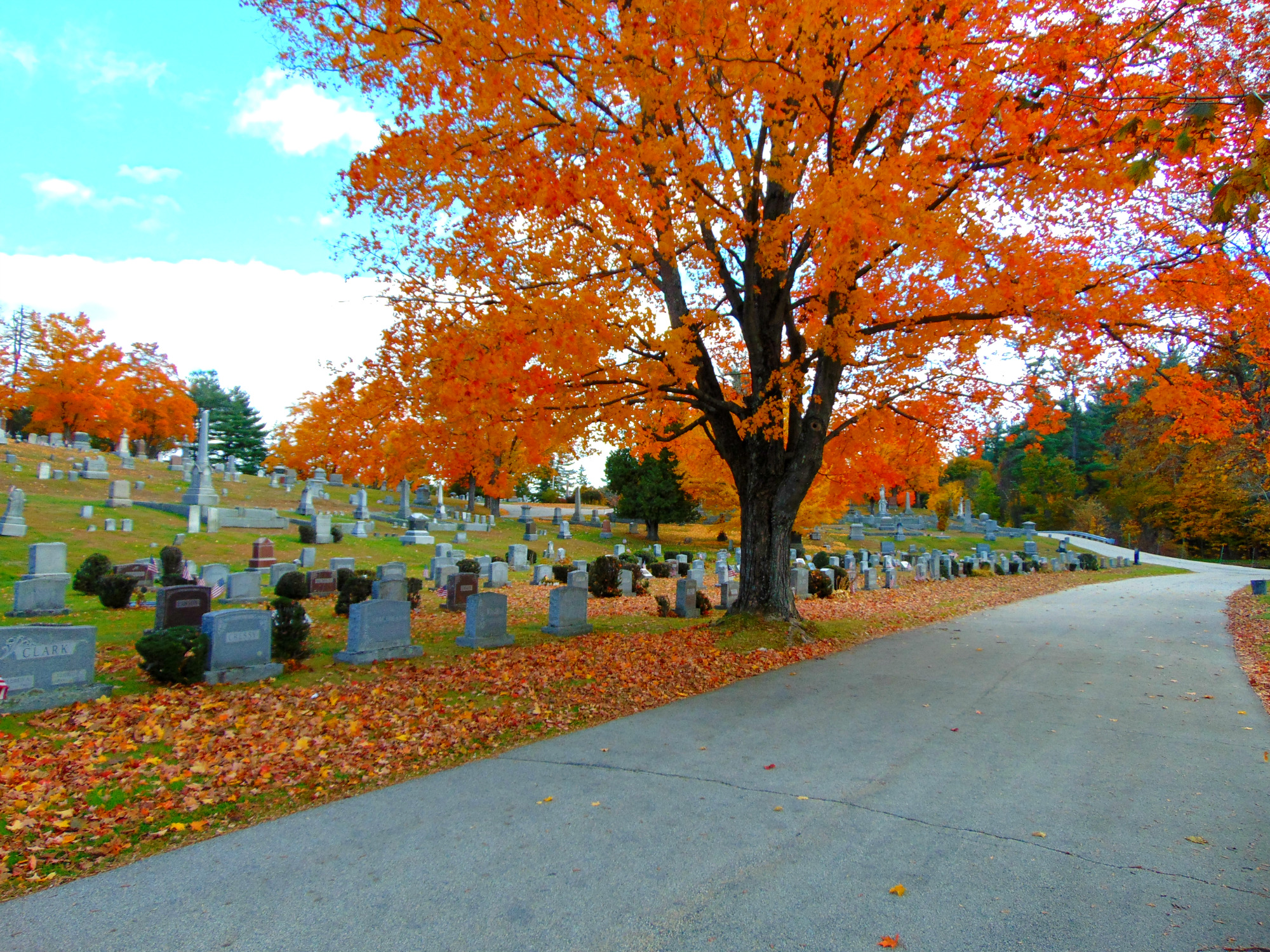 Blossom Hill Cemetery