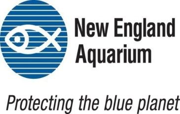 new_england_aquarium