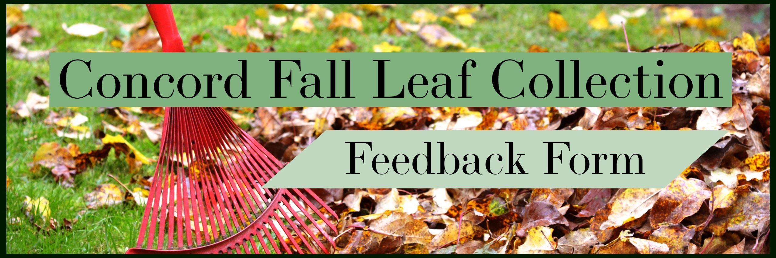 2018 Fall Leaf Feedback Form Banner Opens in new window